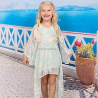 2018 New baby girls party fashion princess flower dress summer dressed kids clothes lace flower infantis floral ruffles wedding
