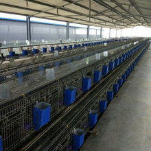 lower price and top quality metal rabbit cages for commercial rabbit on sale