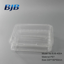 New Design Food Grade Disposable PET Plastic Salad Boxes Food Container