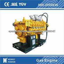 Honny biogas/natural gas generator soundproof