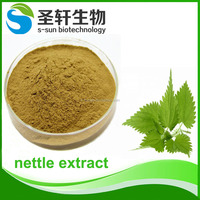 Nettle P.E./Pure nettle extract in herbal extract for health care