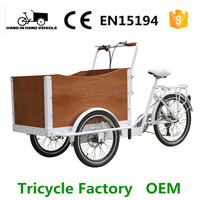 CE Certificate steel frame electric tricycle cargo bike with cheap price