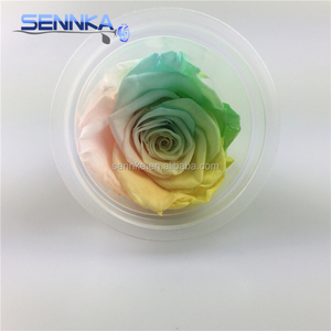 Colorful Preserved Rose Head Infinity Flower Wholesale