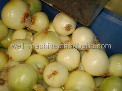 Hot selling electric onion peeler machine