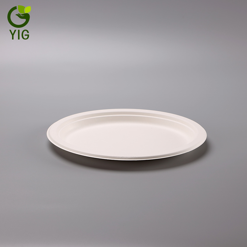 Eco-friendly Compostable Biodegradable Sugarcane Dinnerware Bagasse Paper Pulp Oval Plate