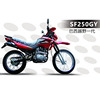 Good quality 250cc motorcycle for sale SF250GY