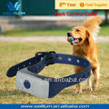 Flexible Training Dog Collar
