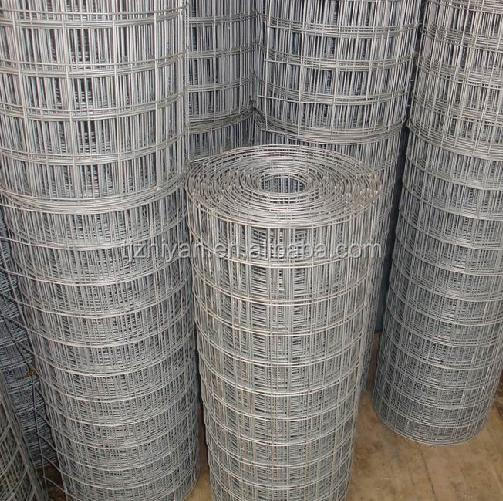 Hot Dipped Galvanized Welded Wire Mesh By Rolls - Buy Galvanized ...