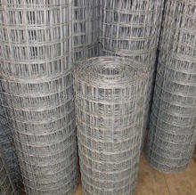 Hot Dipped Galvanized welded wire mesh by rolls