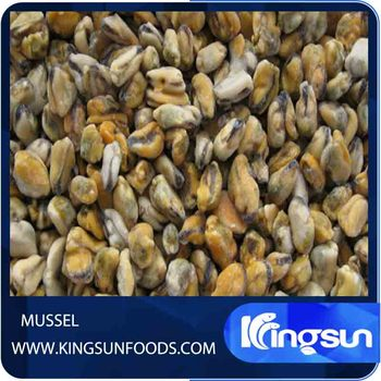 Good Price Top Quality Shellfish Frozen Half Shell Mussel