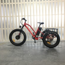 three wheels manufacturer in china 500W electric tricycle for cargo with fat tire