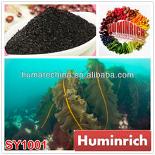 Huminrich Shenyang Seaweed Extract brown alga powder