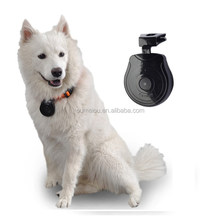 discount lovely Pet Mini Digital Camera for your lovely pets