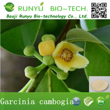 Factory Supply Powder Chinese Herbal Garcinia Cambogia Extract