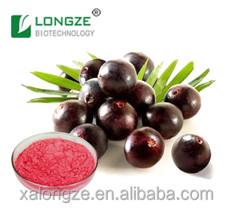 antioxidant,anti-radicalization and anti-aging Brazilian Acai berry Powder Extract with Anthocynidins 10%
