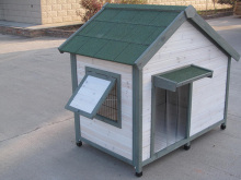 Canine friends pet house wooden dog kennel pet and house sitting pet tree house uk