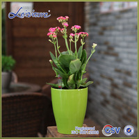 Colorful NO 1 narrow polished selfwatering plastic roman style flower pot HG2301