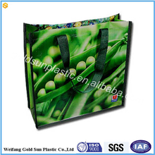 Reusable carry shopping packaging eco-friendly custom PP printed laminated non woven shopping bag