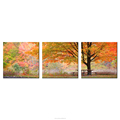 Autumn Countryside Landscape Canvas Painting Golden Scenery Tree Photo Prints Drop Shipping Home Wall Decoration