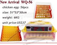 WQ-56 china competitive price jn7-56 egg incubator