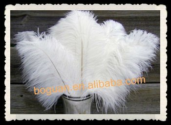 Wholesale bulk white cheap ostrich feathers