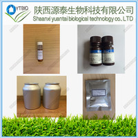 stevioside stevia extract neotame powder CDP Choline CAS 987-78-0 POWDER IN TOCK