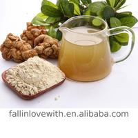 Manufacturer Supplier Radix Notoginseng Powder With