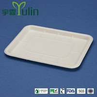 Disposable 100% biodegradable fruit tray