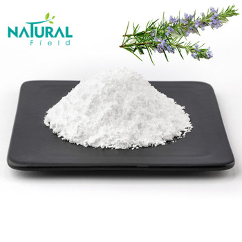 Cosmetic Additive Natural Rosemary Extract Ursolic Acid Powder