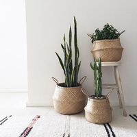 Woven Seagrass Foldable Plant Flower Basket