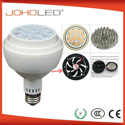 Ceramic Discharge Metal Halide Lamp led 100-277v par30,Par30 12w Led Spotlight