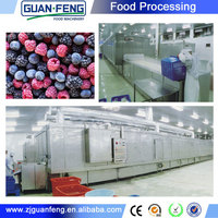 industrial freezer fruits and vegetables flash freeze
