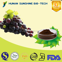 Grape Seed P.E. / Grape Seed Extract (p.e.)