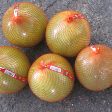Fresh Pomelo for Sale