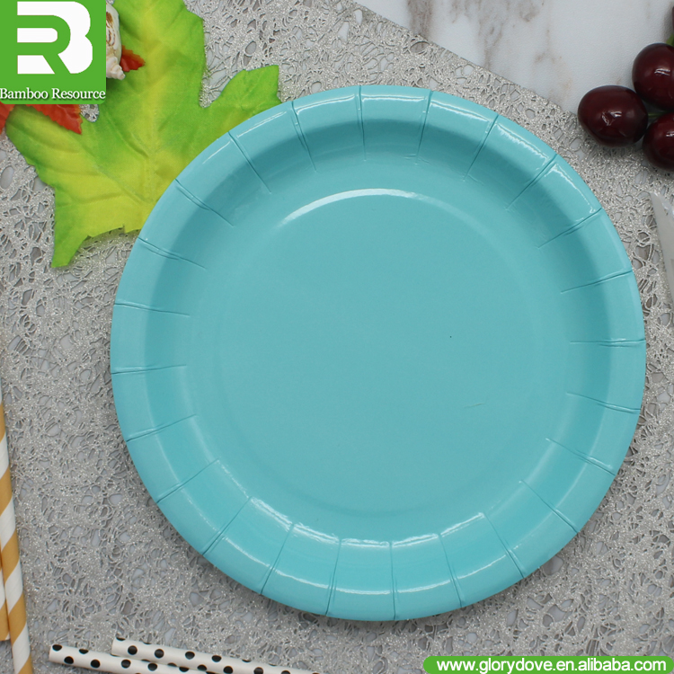 100% Biodegradable Compostable 12 Inch disposable paper plate