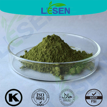 Increase immune system 100% Moringa oleifera leaf powder