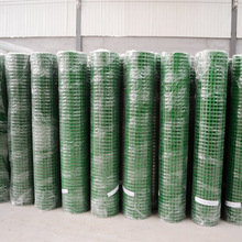 Coated welded wire mesh with pvc or plastic
