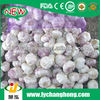 /product-detail/manufactures-of-garlic-and-ginger-natural-garlic-1677459740.html
