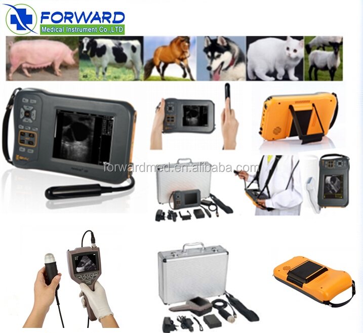 Vet Clinic Devices Portable Veterinary Ultrasound Equipment