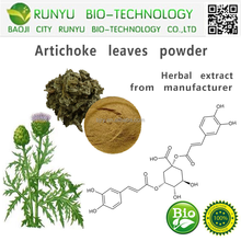High quality Liver Protection Artichoke Extract, Artichoke for Cholesterol and dietary supplement