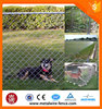 factory price galvanized then pvc coated chain link fence dog cages