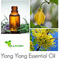 Natural Pure Ylang Ylang Essential Oil For Sale