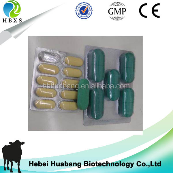 HBXS factory GMP Albendazole tablet or bolus for dog GMP pharmaceutical