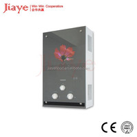 2016 Popular Wall Mounted Boiler/Flue Type Gas Geyser for Household Gas Water Heater JY-GGW035