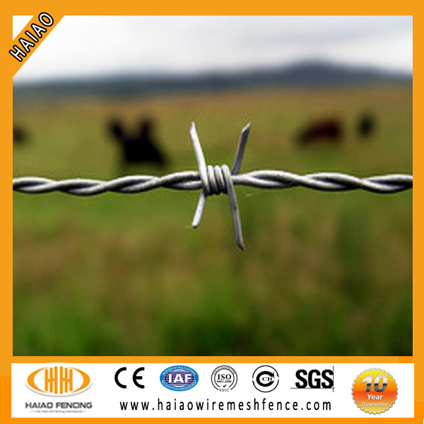 Hot dipped galvanized barbed wire mesh