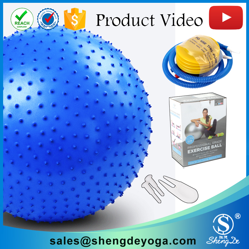 Shengde Anti-burst Fitness PVC Yoga Ball with Pump