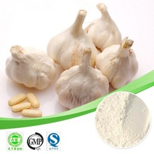 Hot sale Garlic extract/Allicin 2%/Garlic Oil/Antibiotic plant extract