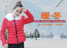 Small cotton short section of small jacket female new wave of thin section of small padded winter coat