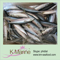 Supply frozen fish mackerel fish