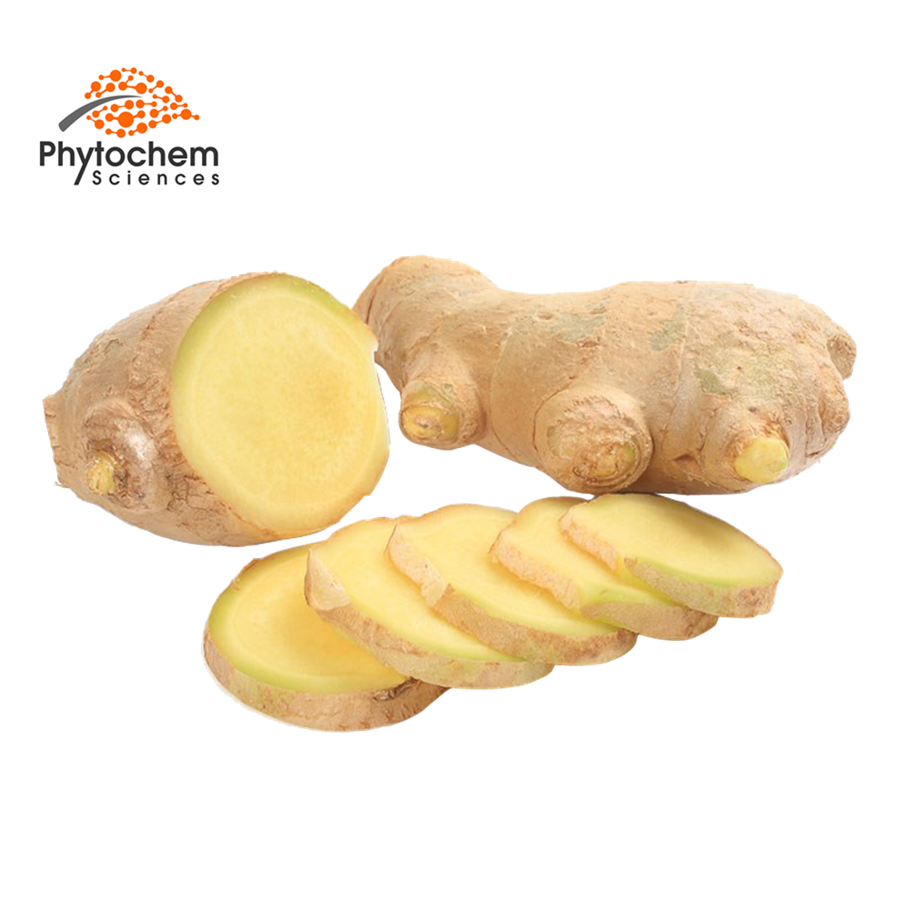 Ginger Extract/Ginger Extract Powder/Ginger Extract Gingerol